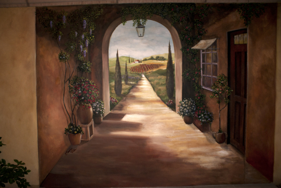 Skywoods Decorative Painting Faux Finishing Murals Phoenix AZ