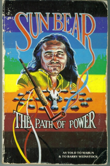 first nation vision quest spirit guide